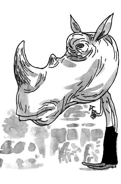 http://sorwellz.free.fr/blog2010/20100916-rhino.jpg